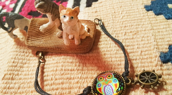 Send jewellery or handmade items to bazaar in support of homeless animals
