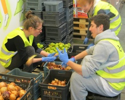 Sort out donated food for people in need