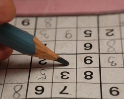 Volunteer at the World Sudoku and Puzzle Championships