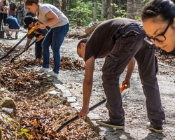 Rake up leaf litter along the Zlatni mostove trail on Vitosha